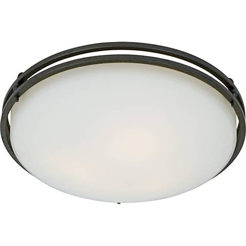 "Ozark Collection 16"" Wide Ceiling Light Fixture"