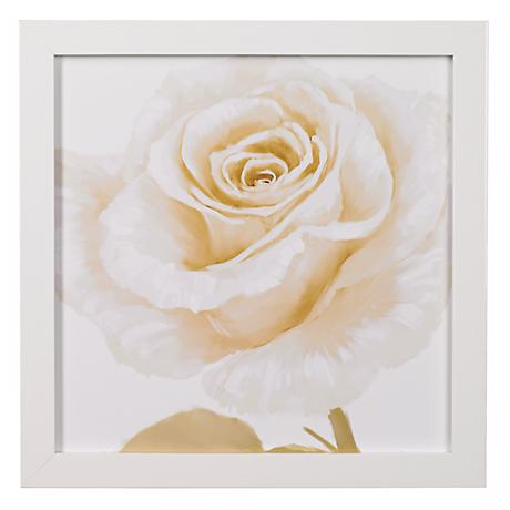 "White Roses Closeups A Framed 24"" Square Wall Art"