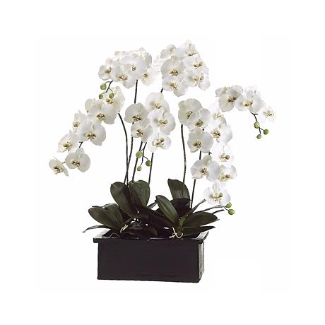 "White Orchids in Terra Cotta Pot 42"" High Faux Flower"