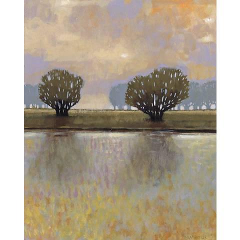 """Dreamer's Lake II Giclee 30"""" High Canvas Wall Art"""