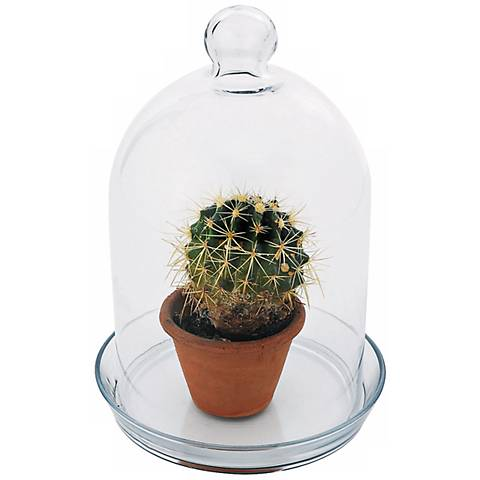 "Bell Glass 12"" High Jar Terrarium I"