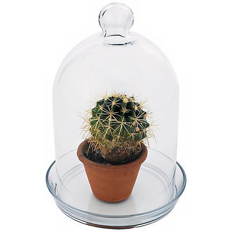 """Bell Glass 12"""" High Jar Terrarium I"""