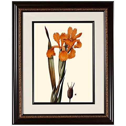 """Warm Floral A 23 3/4"""" High Framed Botanical Wall Art"""