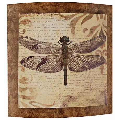 """Dragonfly Convex 22"""" Wide Outdoor Wall Art"""