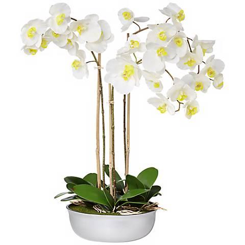 "Triple White Moth 32"" Wide Orchids in Silver Ceramic Pot"