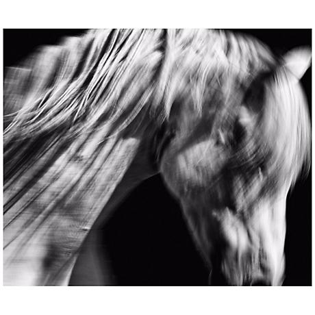 """Andalusian I 24 1/2"""" Wide Framed Horse Wall Art"""