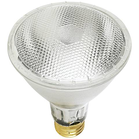 Tesler 39 Watt PAR30  Long Neck Light Bulb