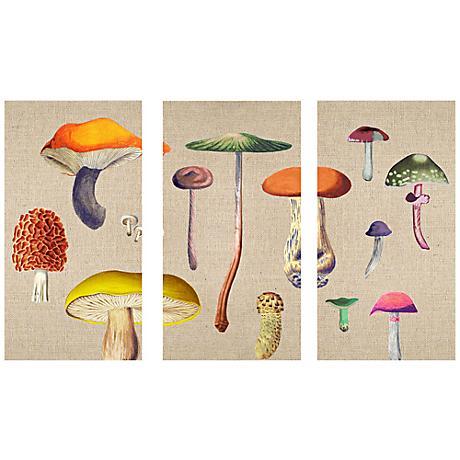 Mushroom Triptych Set of 3 Canvas Wall Art