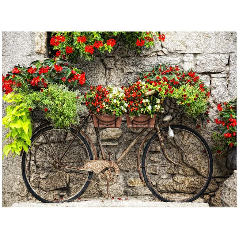 """Rusty Bicyclette 40""""W All-Weather Indoor-Outdoor Wall Art"""