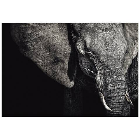 "The Matriarch Elephant 32"" Wide Wall Art Print"