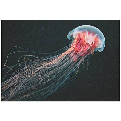 "Longtail Jellyfish 32"" Wide Giclee Metal Wall Art"