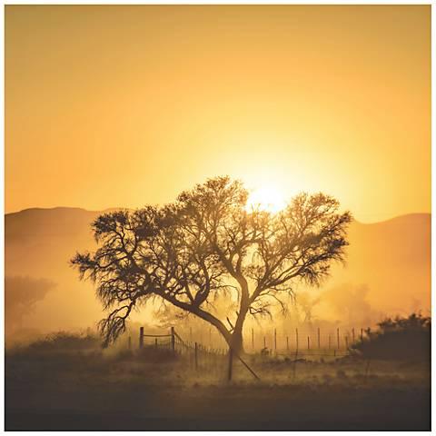 Golden Sunrise 22\
