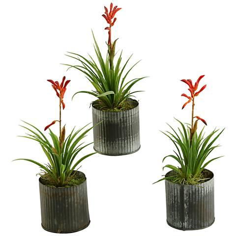 """Blooming Succulents 10 1/2""""H Faux Plants in Vases Set of 3"""