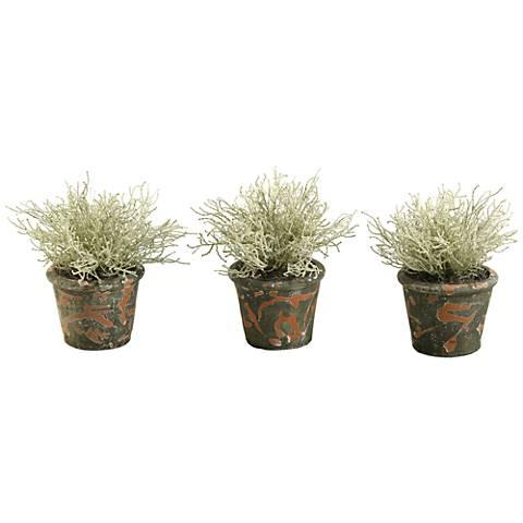 """Santolinia Bush 10"""" High Faux Plant in Pot Set of 3"""