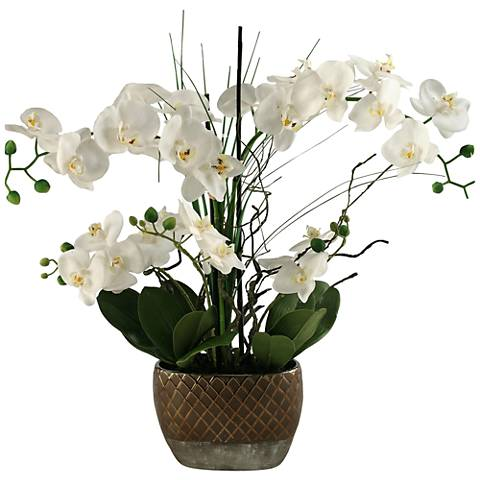 "Cream Phaleanopsis Orchids 26""H Faux Flowers"