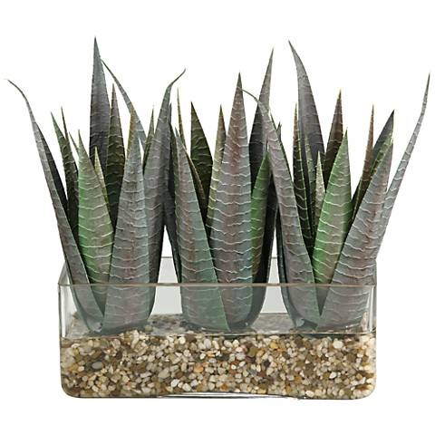 """Striped Agave 15"""" Wide Faux Plant in Rectangle Glass"""