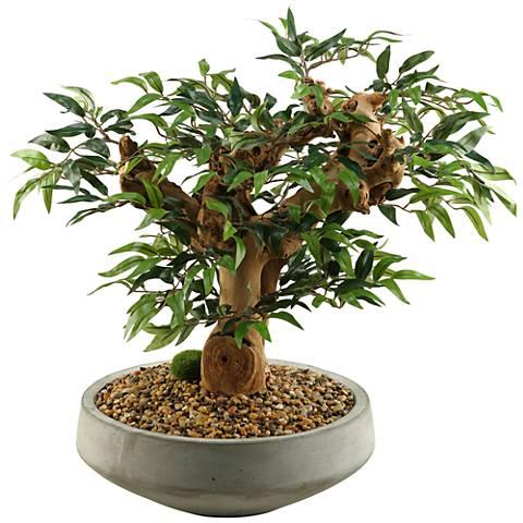 "Mini Ruscus Bonsai Tree 28""H Faux Plant in Concrete Bowl"