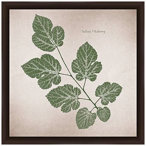 """White Mulberry 14"""" Square Framed Giclee Wall Art"""