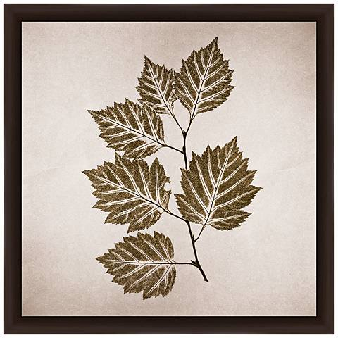 "Vintage Leaves 14"" Square Framed Giclee Wall Art"
