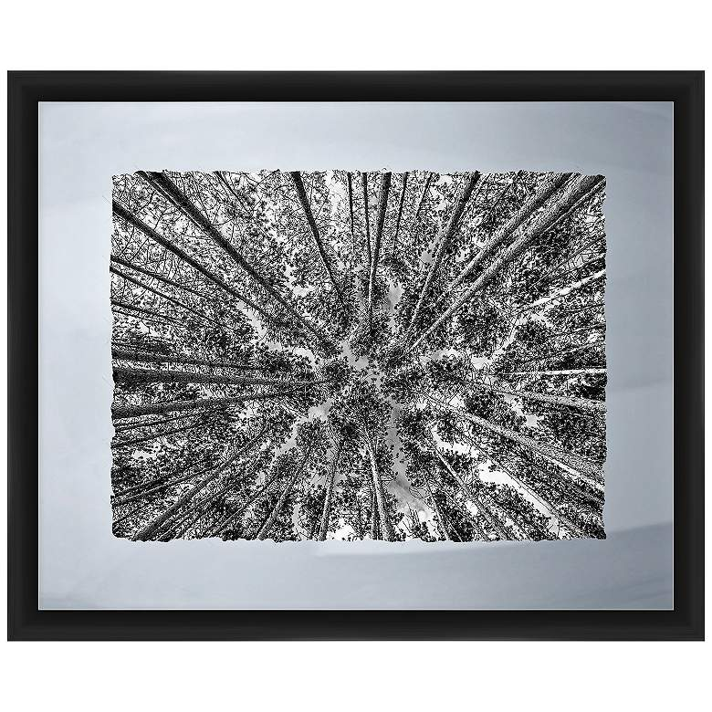 """Looking To The Trees 22"""" Wide Framed Giclee Wall Art"""