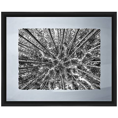 "Looking To The Trees 22"" Wide Framed Giclee Wall Art"