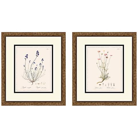 "Vintage Florals 16"" High 2-Piece Framed Giclee Wall Art Set"
