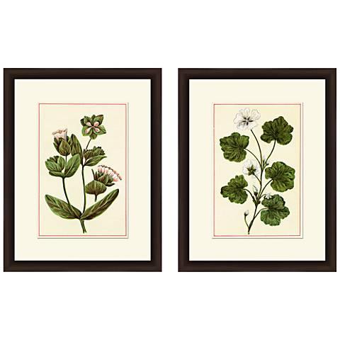 """Botanicals 18"""" High 2-Piece Giclee Framed Wall Art Set"""