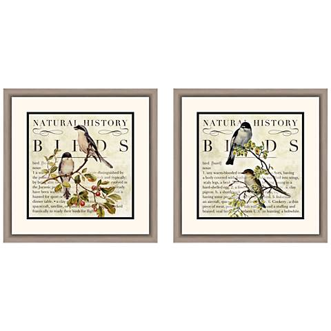 "Botanical Birds 18"" Square 2-Piece Framed Wall Art Set"