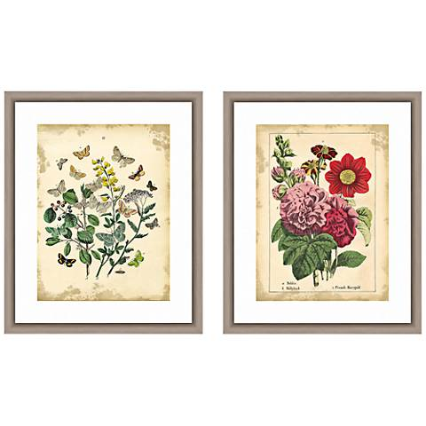 """Vintage Botanicals 22""""H 2-Piece Framed Giclee Wall Art Set"""