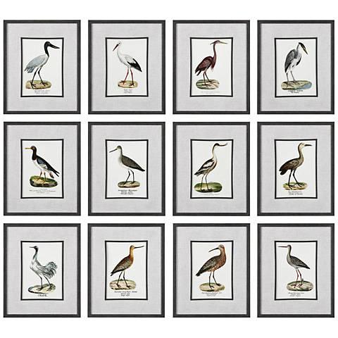 "Seashore Birds 22""H 12-Piece Framed Wall Art Print Set"