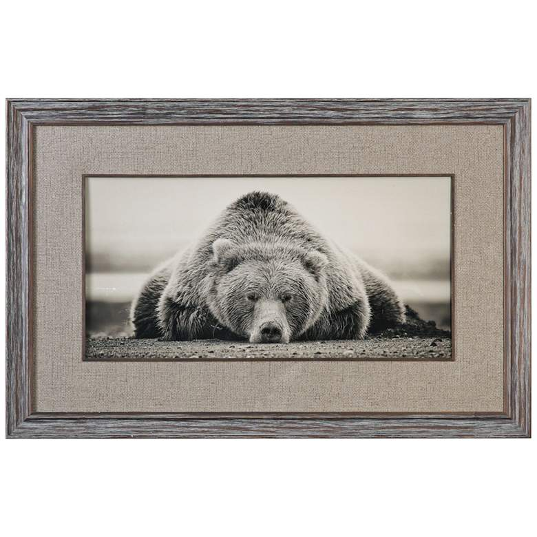 "Deep Sleep 50""W Grizzly Photo Framed Wall Art"