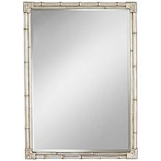 "Takeo Silver Bamboo 31"" x 43"" Rectangle Wall Mirror"