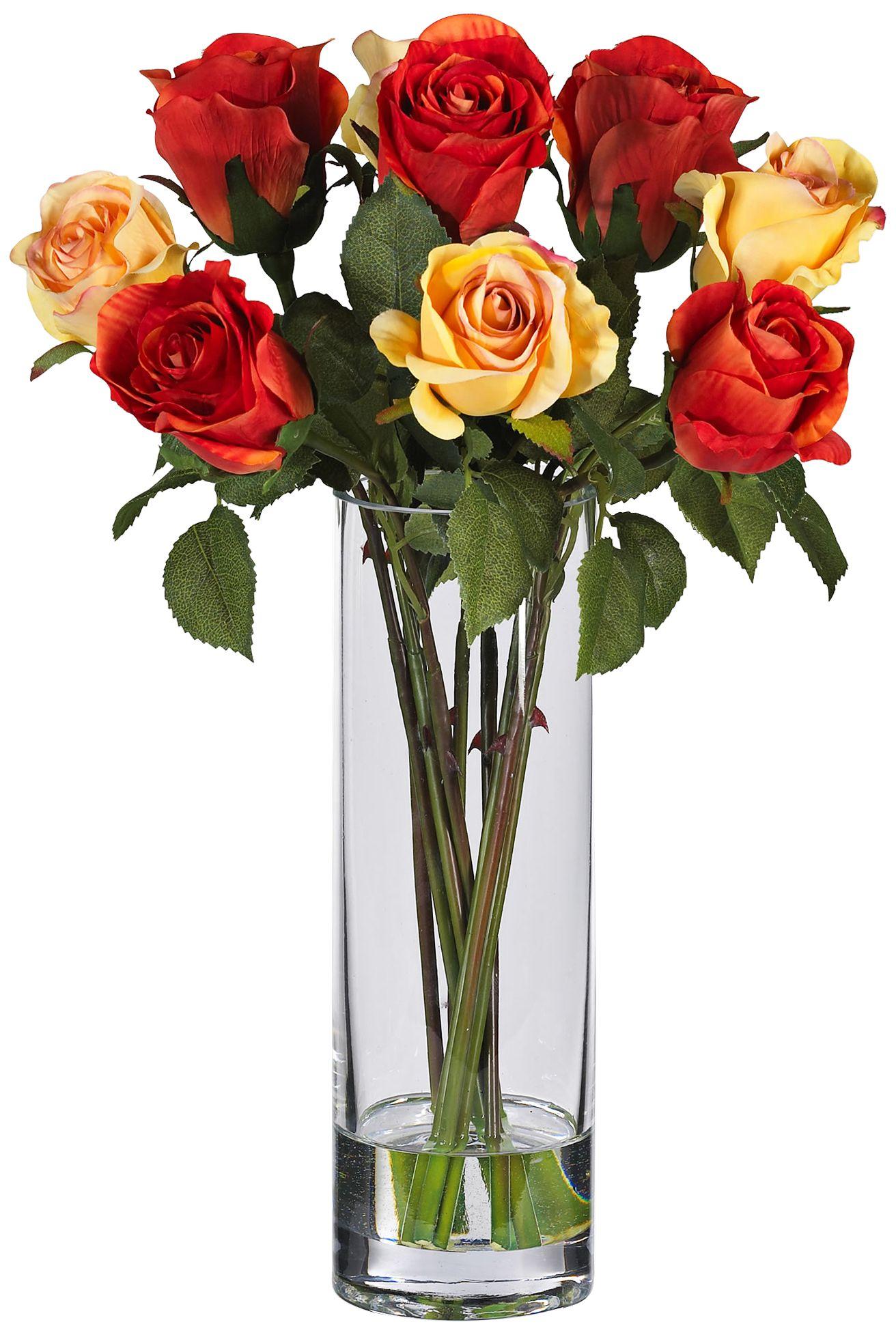 224 & Multicolor Rose 16\