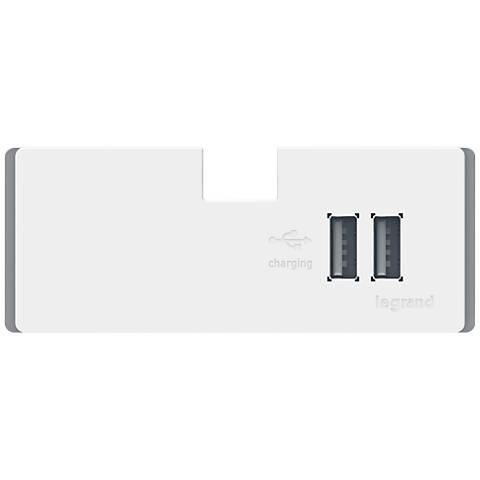 adorne® White USB Outlet Module