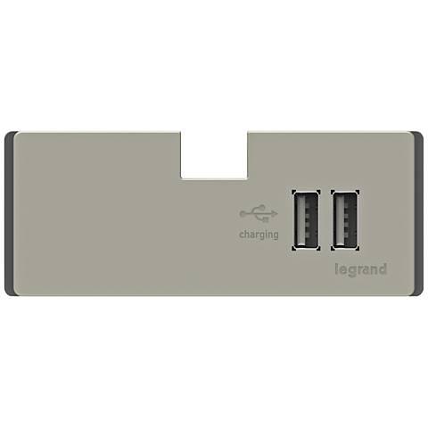 adorne® Titanium 3.1A 2-Port USB Electronic Charger Module