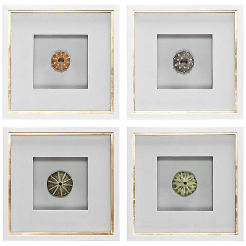 "Uttermost Sea Urchins 4-Piece 16 1/2"" High Wall Art Set"