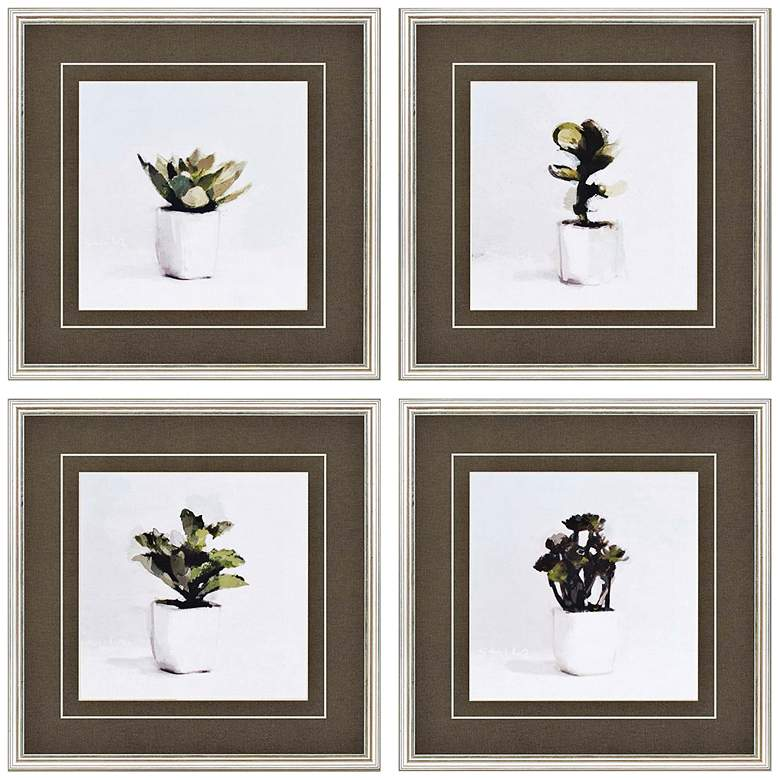 """Potted Succulents 20"""" Square 4-Print Framed Wall Art Set"""