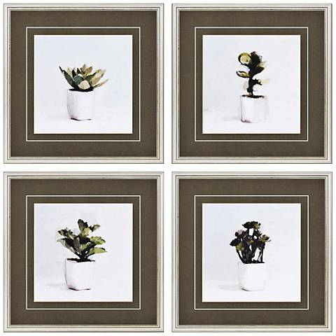 "Potted Succulents 20"" Square 4-Print Framed Wall Art Set"