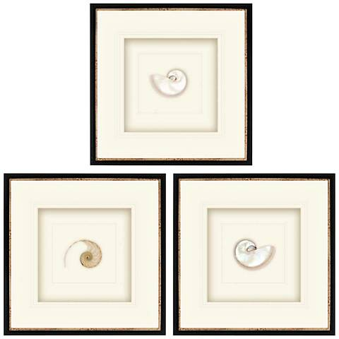"Pearled Nautilus 22"" Square 3-Print Framed Wall Art Set"