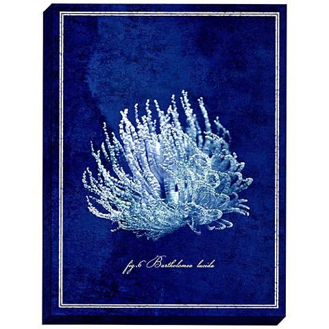 "Bartholomea Lucida 47""H Deep Sea Anemone Mounted Wall Art"