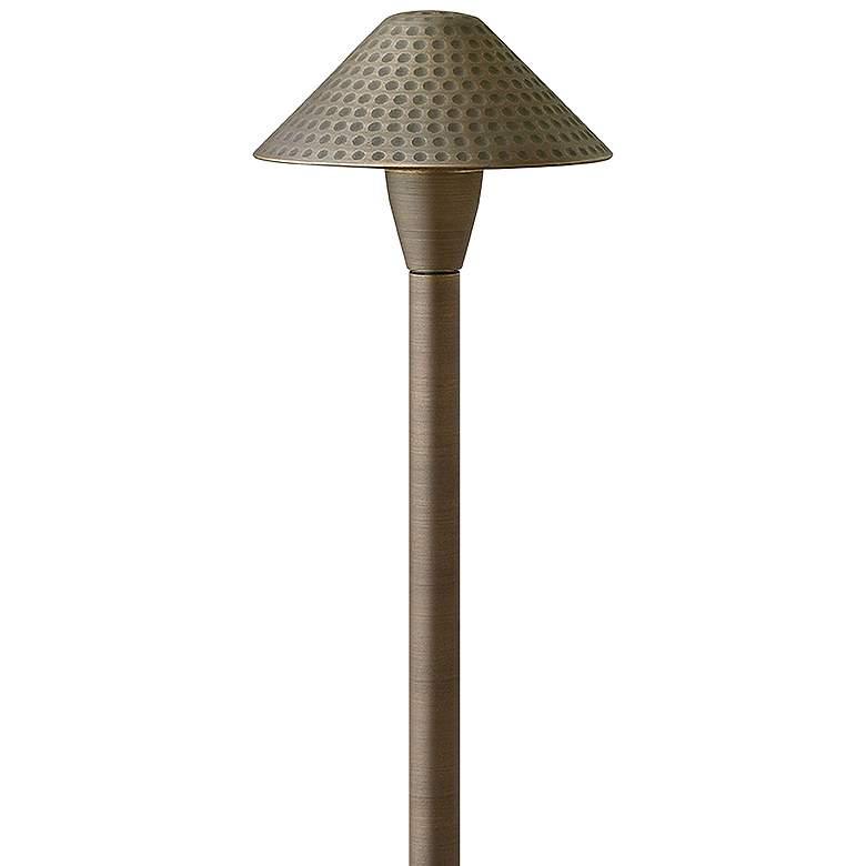 "Hardy Island 23 1/4""H Matte Bronze Hammered LED"