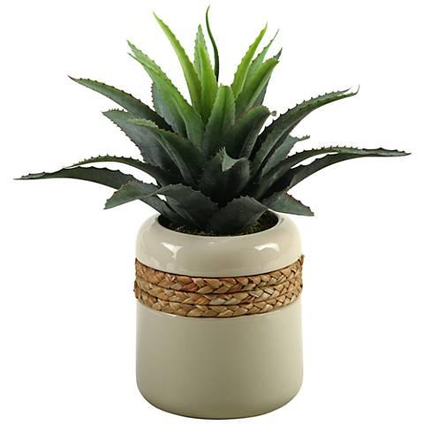 "Green Star Succulent 14 1/2"" Wide in Round Ceramic Planter"