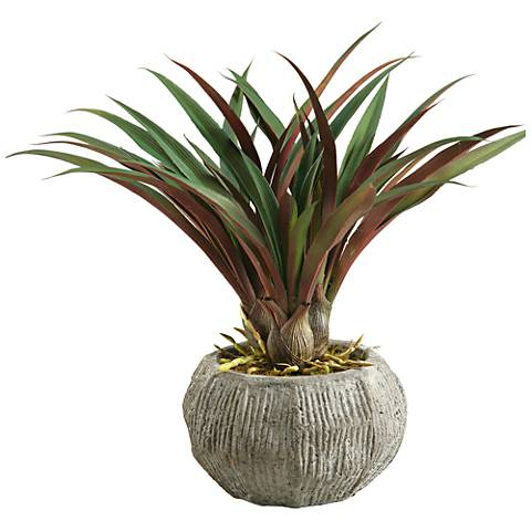 "Red and Green Lily Grass 15"" High in Concrete Bowl Planter"