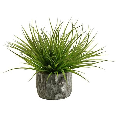 "Green Wild Grass 20"" Wide in Concrete Bowl Planter"