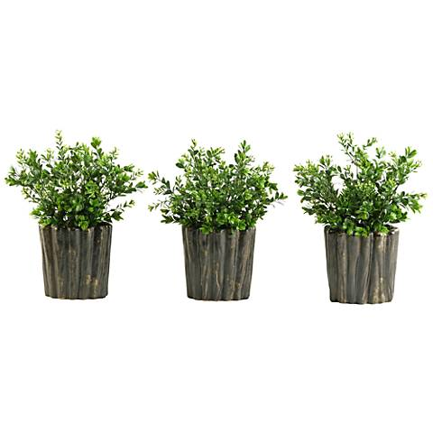 """Green Boxwood Spray 9 1/2""""H in Set of 3 Oval Ceramic Planters"""