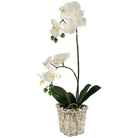 """Cream Orchids 23"""" High in Crackle Ceramic Planter"""
