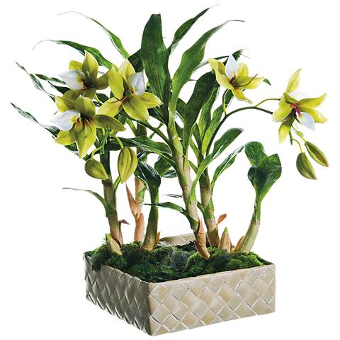 "Green and Cream Star Orchid 18"" High Faux Plant in Basket"