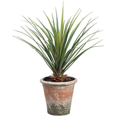 """Green Yucca 26 1/2"""" High Faux Plant in Clay Pot"""