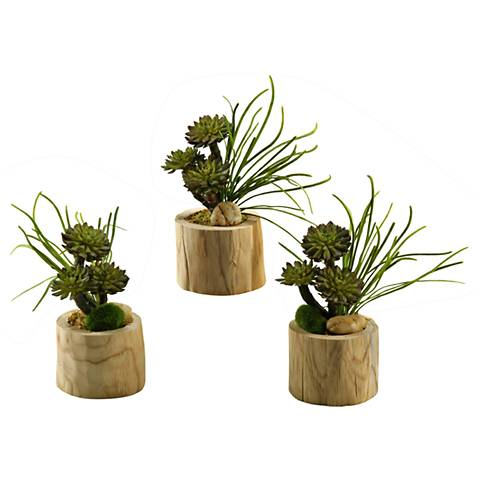 """Mini Wheel Succulents and Pearl Grass 10""""H Faux Plant Set of 3"""