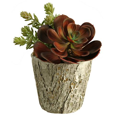 "Red Echeveria and Burro Tail 9"" High Faux Plant"